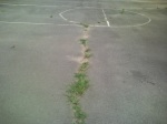 Asphalt surface and grass outcropping of basketball courts, Forest Glen Park, July 30, 2010 (Donald Earl Collins)