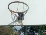 Metal mesh, hoop and backboard at Belle Ziegler Park, September 17, 2010 (Donald Earl Collins)
