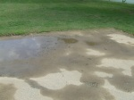 Muddy tire track and footprints on basketball court, Meadowbrook Park, September 17, 2010 (Donald Earl Collins)