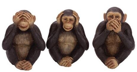 Monkey See Monkey Do, May 22, 2013. (http://kidsunder7.com).