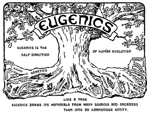Logo of the Second International Congress of Eugenics, 1921, May 9, 2005. (Fastfission via Wikipedia). In public domain.