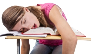 A student fast asleep, or the future with Common Core, December 21, 2013. (http://www.medicalxpress.com).