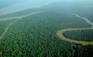 An aerial picture of an area of the Amazon Rainforest, Brazil, September 9, 2009. (Felipe Menegaz via Wikipedia). Released to public domain via CC-SA-3.0/GNU.