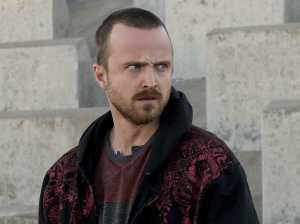 Aaron Paul as Jesse Pinkman in Breaking Bad, Season 5, September 2, 2013. (http://www.businessinsider.com).