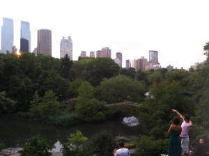 Central Park, looking out toward Midtown's West Side, New York, NY, August 5, 2014. (Donald Earl Collins).