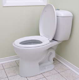 A post-1994 environmental friendly toilet, September 20, 2014. (http://greeleygov.com).