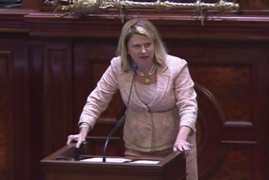 South Carolina Representative Jenny Horne (Republican) speaking on floor of House chamber, Columbia, SC, July 8, 2015. (http://www.slate.com via C-SPAN3).