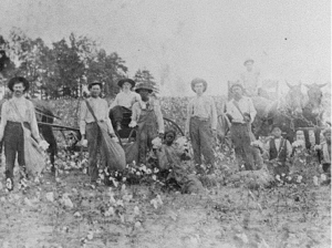 Black and White sharecroppers in Randolph County, Georgia, 1910. (Georgia Archives, Vanishing Georgia Collection)