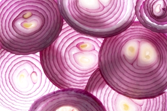 Sliced onion layers, May 7, 2015. (http://www.medicaldaily.com).